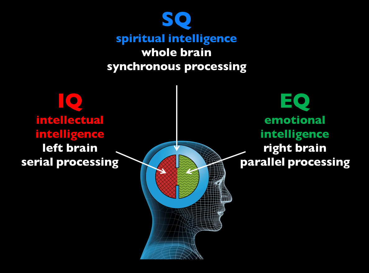 dimensions of intelligence