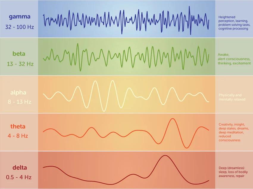 brain wave types graphs