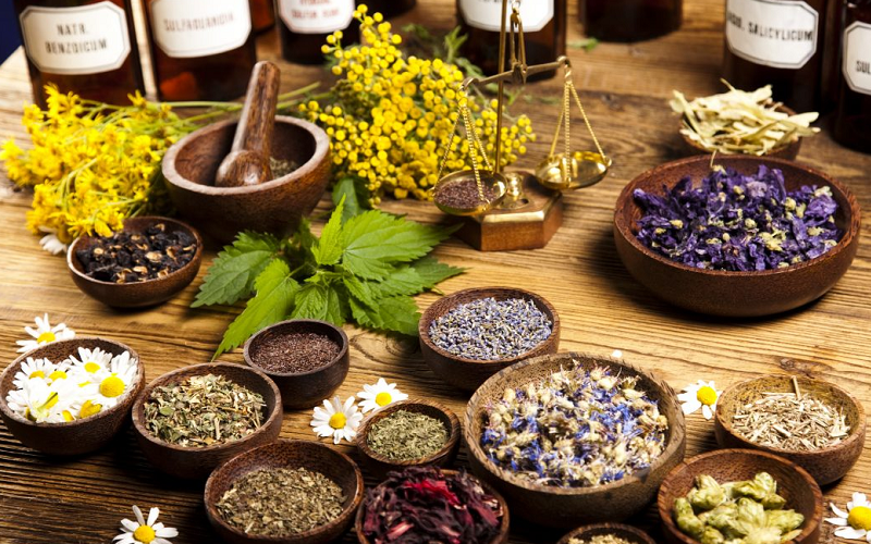 traditional medicine articles